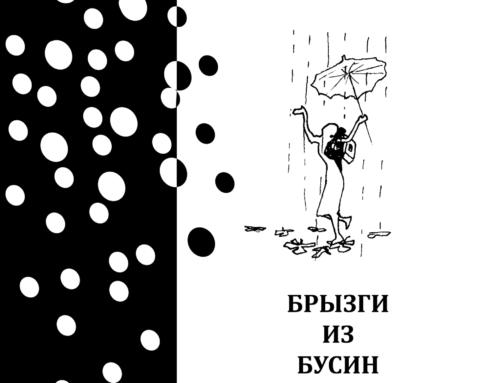 БРЫЗГИ ИЗ БУСИН. Васильченко Є. В.